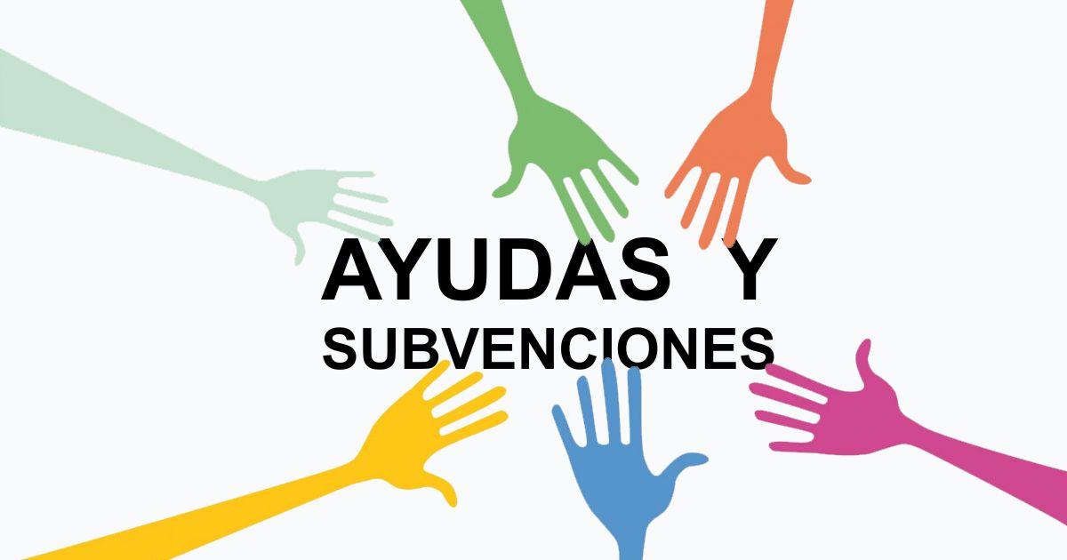 SUBVENCIONES AUTONOMOS